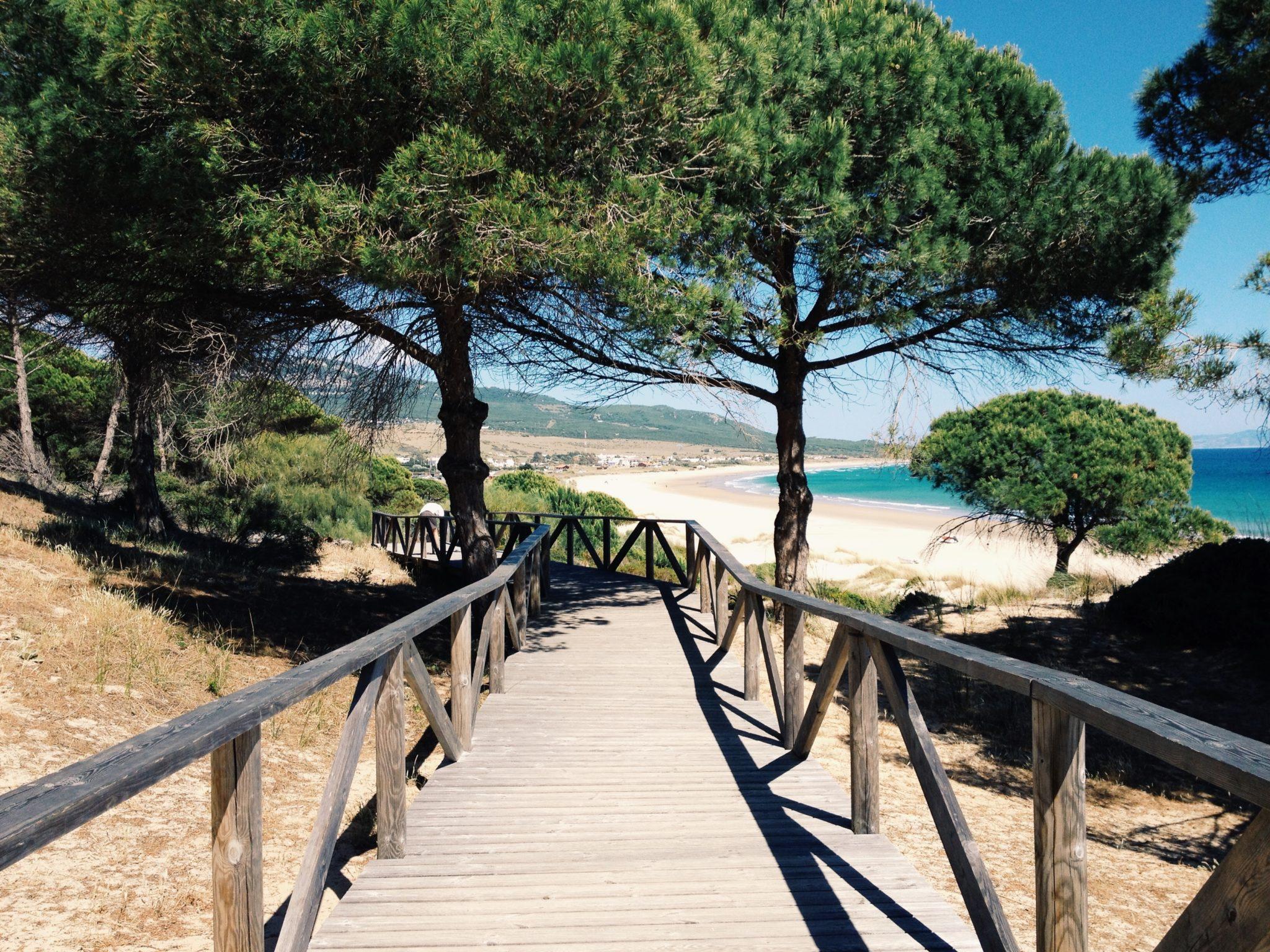 Holzsteg zum Dünenstrand an der Costa de la Luz