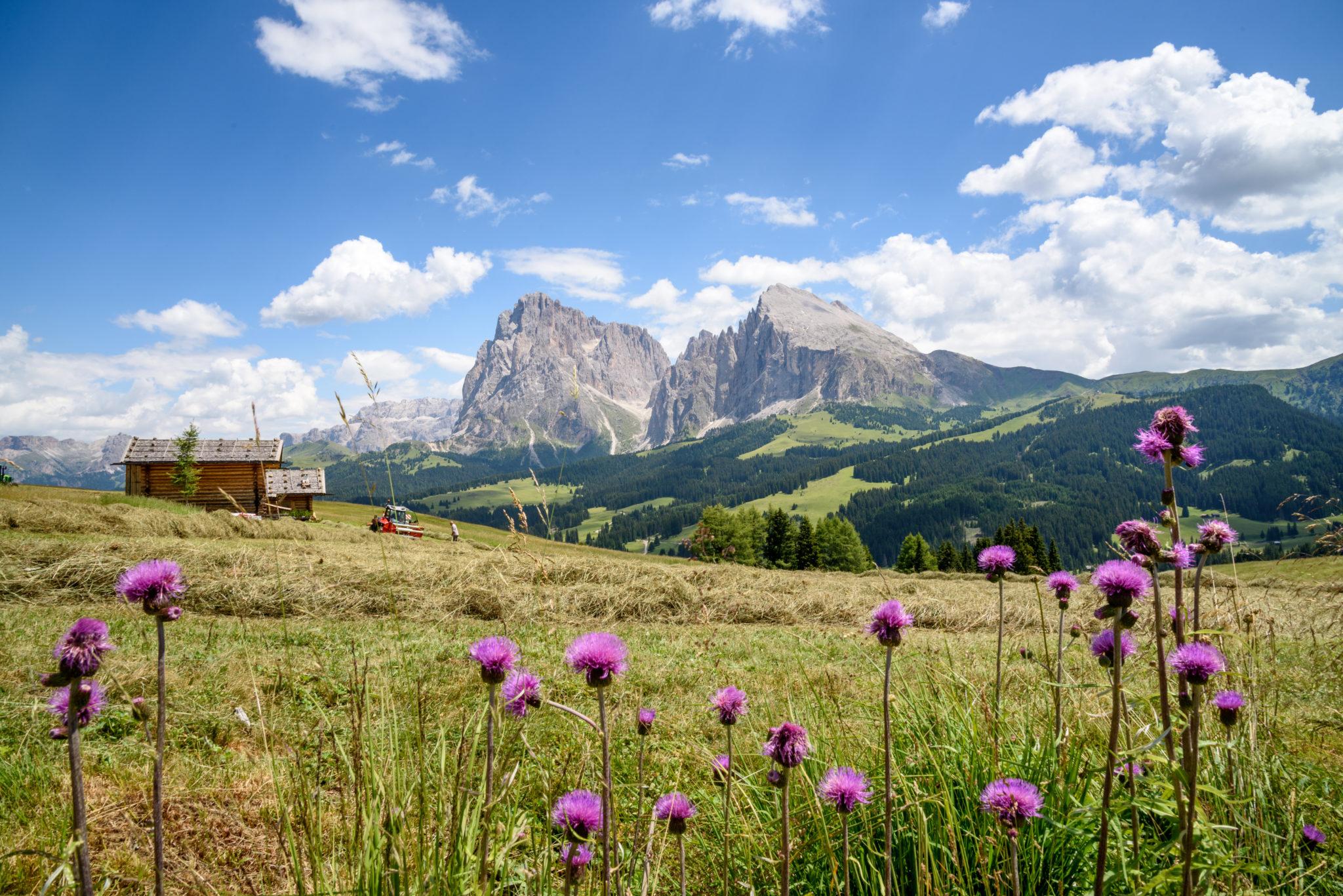 Herrliche Landschaften in Südtirol