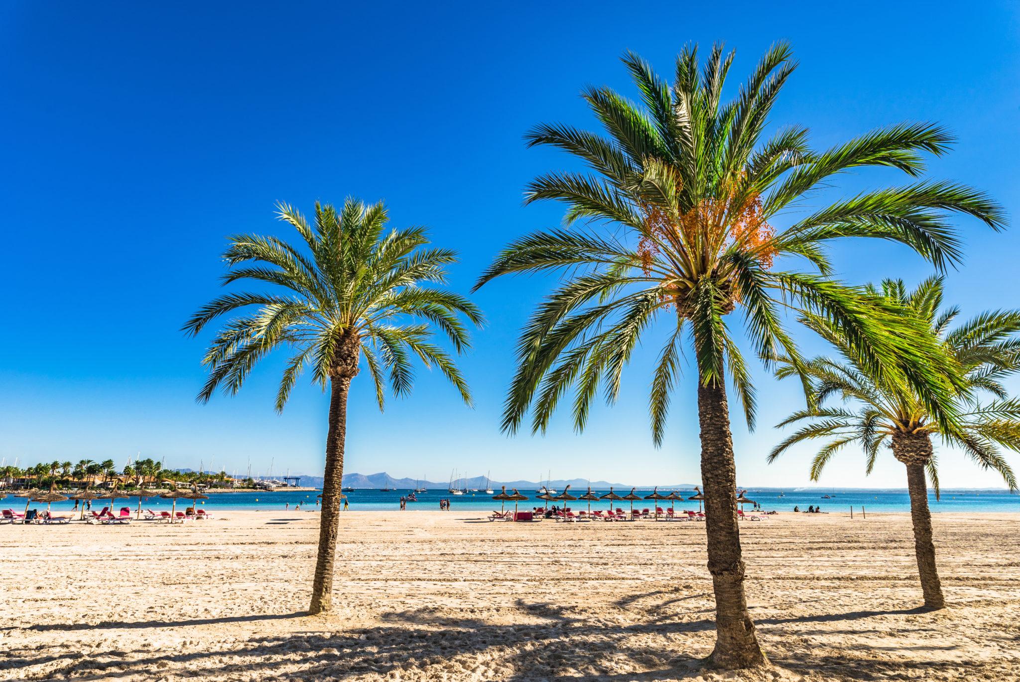 Der Strand von Alcudia