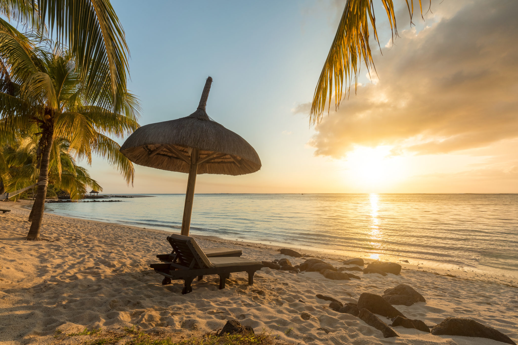 Paradisiac and Desert Island white sand Beach Palm tree at Sunset