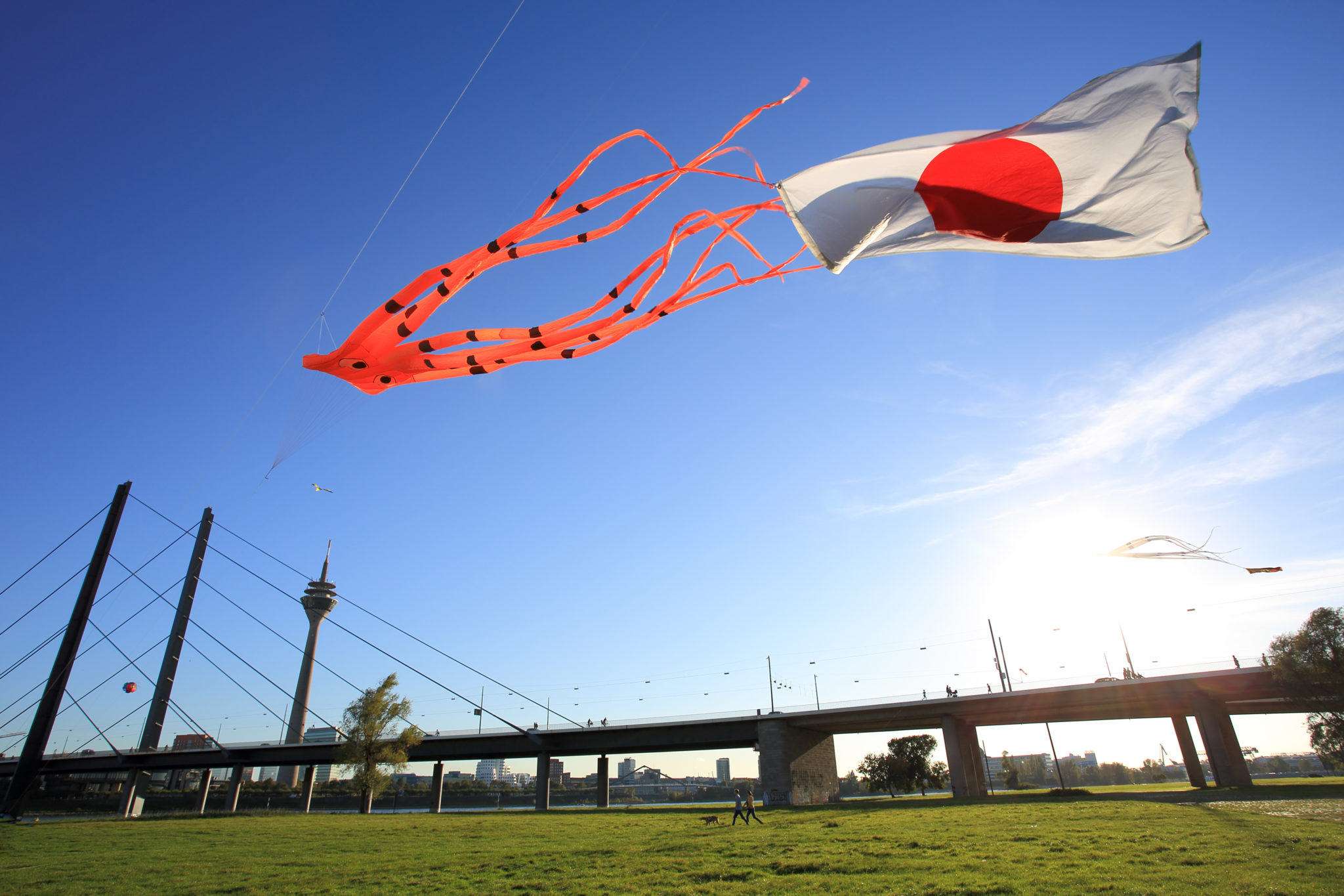 Japan am Rhein