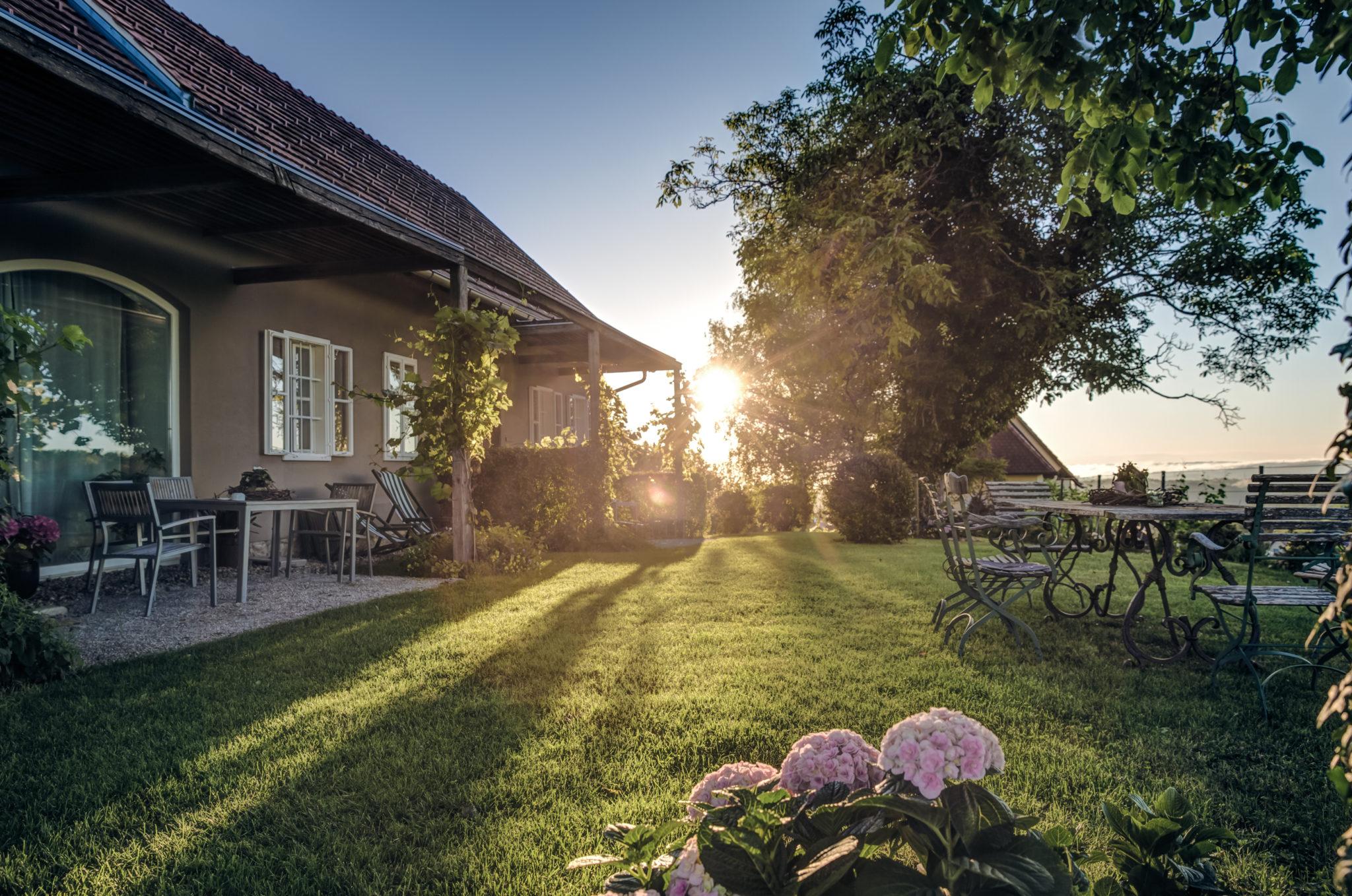 Sonnenaufgang in Zieregg - Winzarei Weingut Tement