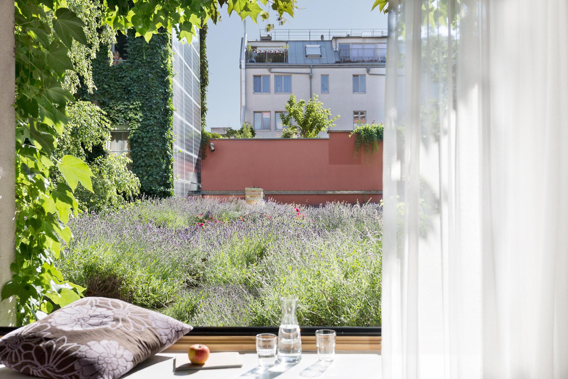 Komfortzimmer mit Blick in den Lavendelgarten © Boutiquehotel Stadthalle/ Tina Herzl