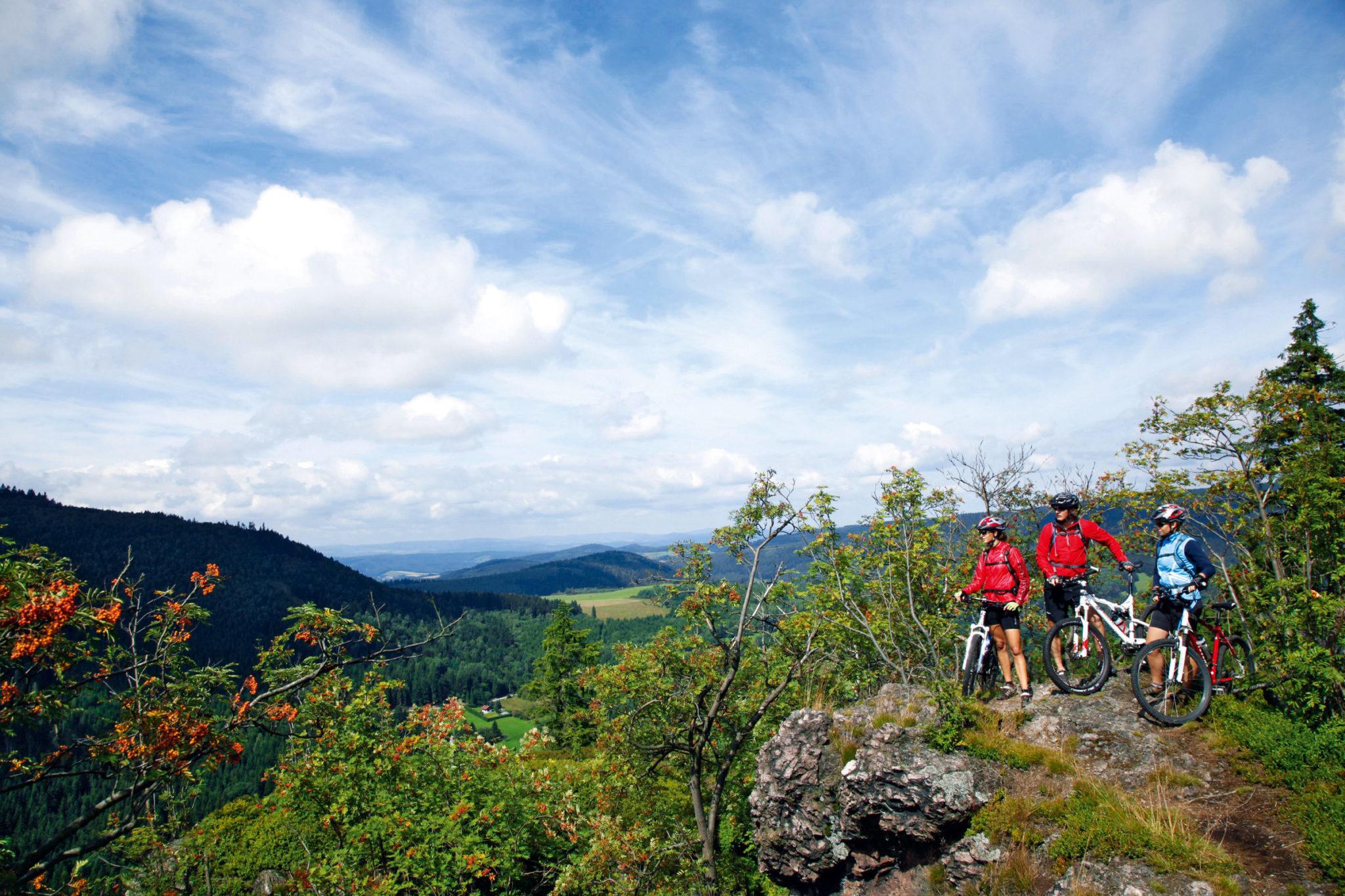 mountainbiken-thueringer-Mountainbiken am Rennsteig im Thüringer Wald