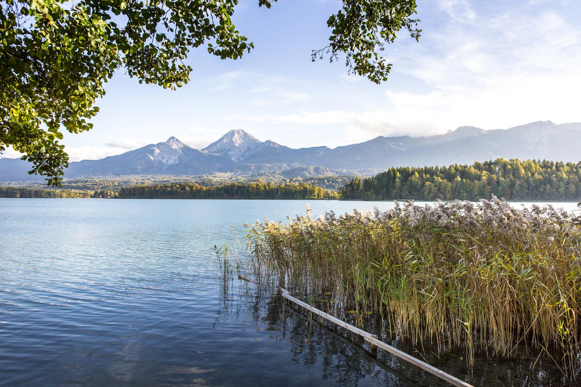 Sommerurlaub in Österreich