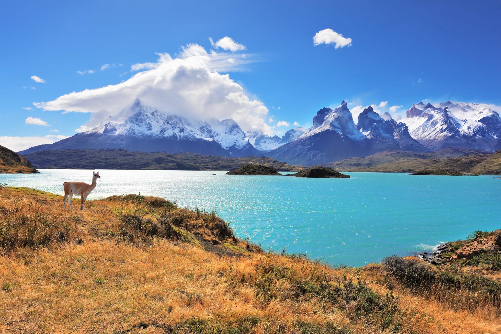 Atemberaubende Landschaft am Pehoe See im Torres del Paine