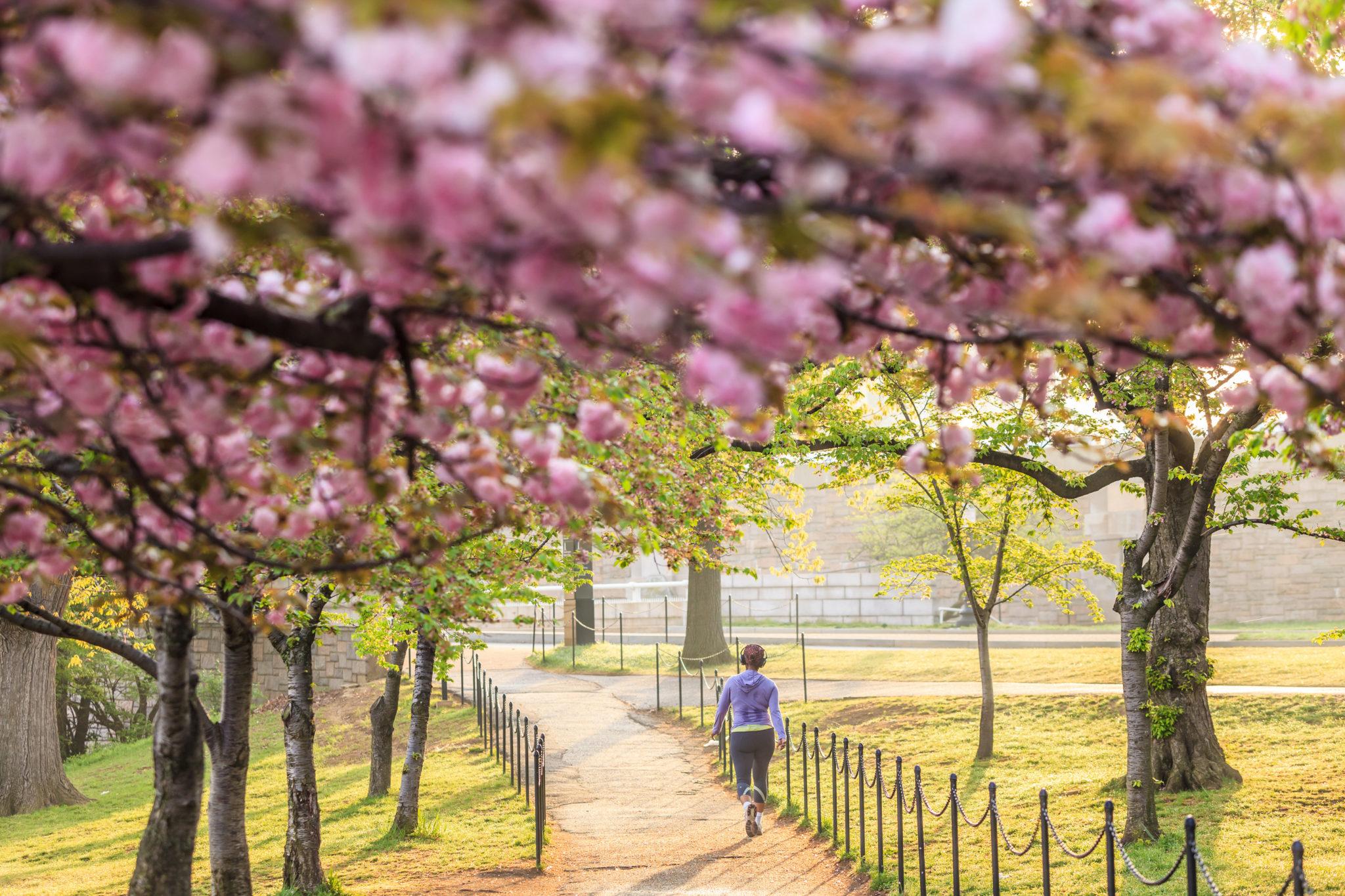 Top10 der besten Reiseziele für den April