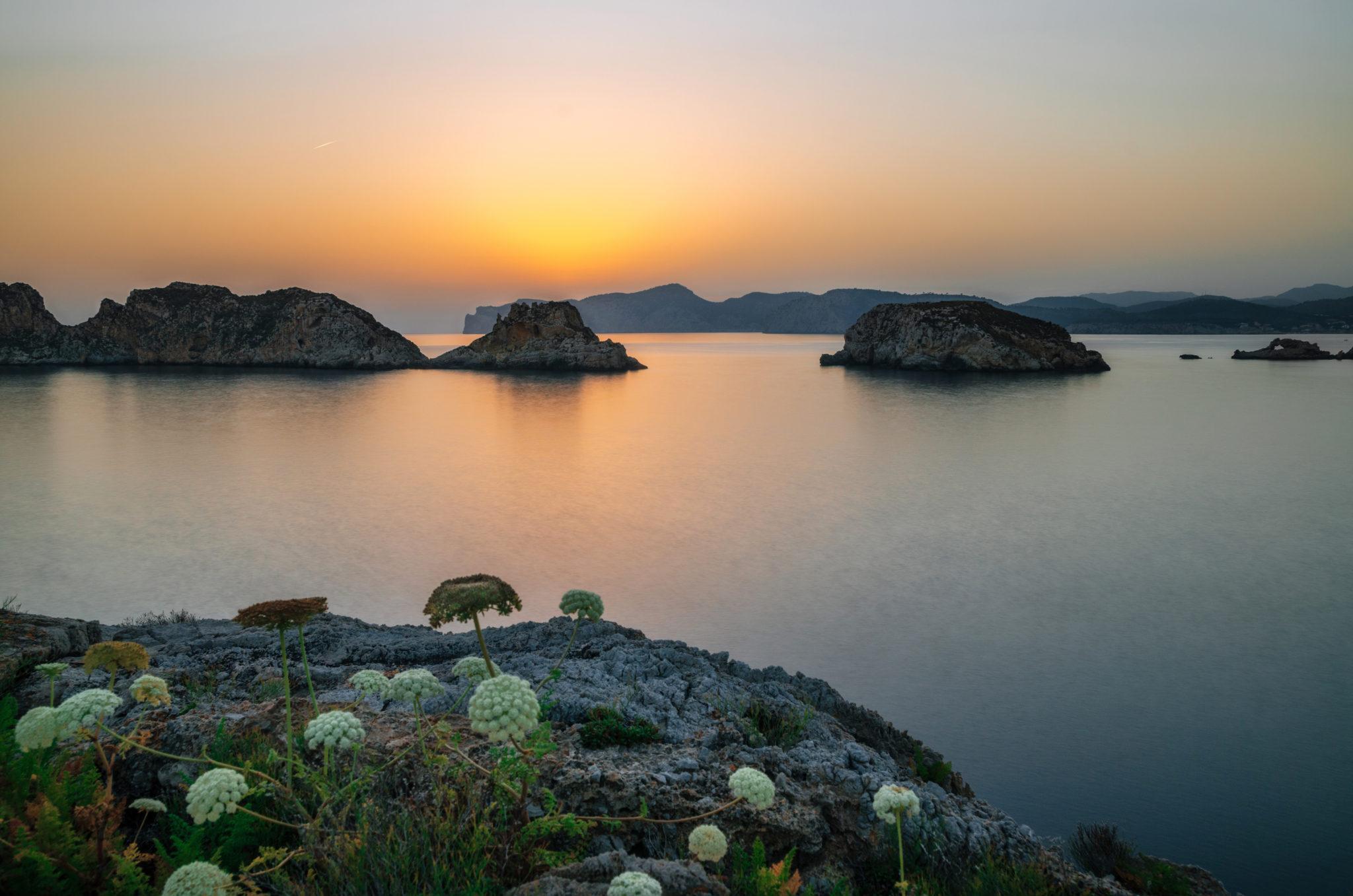 Die Islas Malgrats in der Bucht von Santa Ponsa